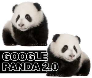 Google Panda Update by Emphasize Design